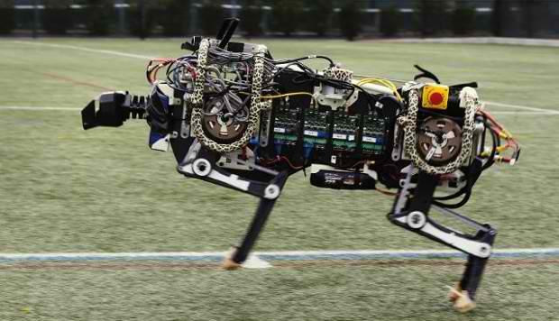 Robotul-ghepard al MIT poate sari garduri acum