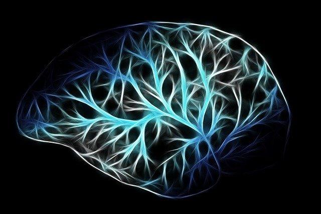Capacitatea de memorie a creierului uman este mai mare decat se credea