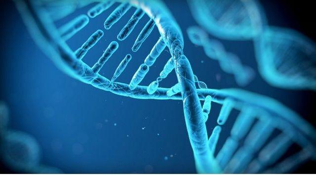 ADN-ul este capabil sa stocheze informatie pentru 2000 de ani