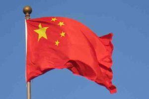China va incepe clonarea de vite