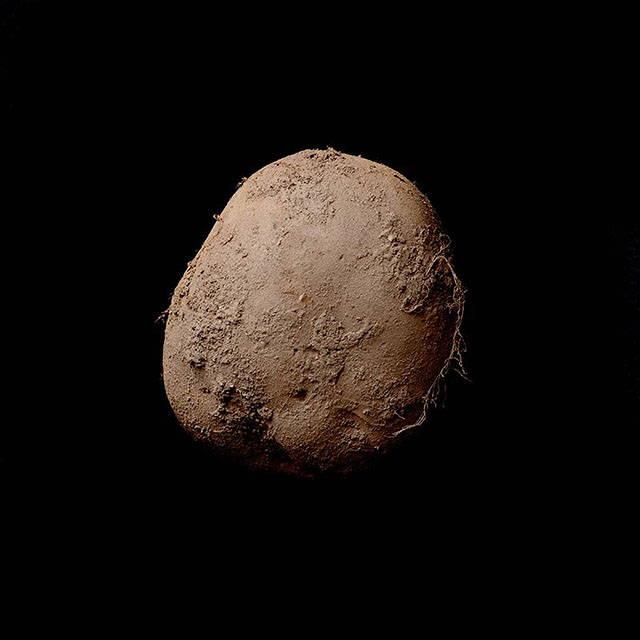 Fotografia unui cartof s-a vandut aparent cu peste un milion de dolari