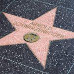 Arnold Schwarzenegger va juca in noul film Terminator