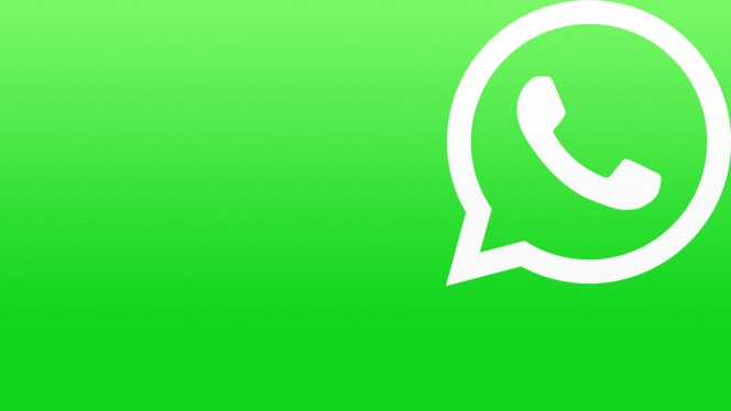 Grupurile WhatsApp le permit studentilor sa se exprime mai bine