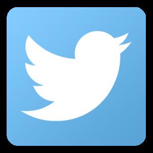 Un utilizator japonez a amenintat cu moartea un tantar, iar contul lui de Twitter a fost suspendat