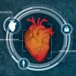 Cercetatorii folosesc dimensiunea inimii drept securitate biometrica