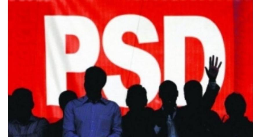 PSD-ul a scos la inaintare statul paralel, statul ilegitim