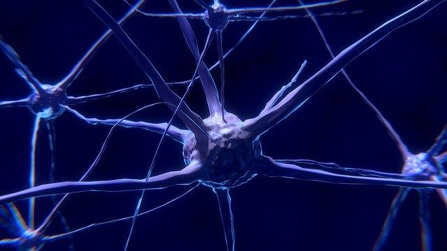 Cercetatorii descopera o modalitate mai putin daunatoare de a plasa electrozi in creier