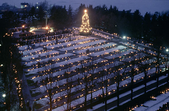Finlanda cimitir