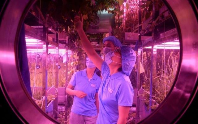 Voluntari chinezi au petrecut 200 de zile intr-o baza lunara simulata