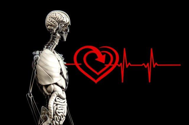 Inteligenta artificiala a Google poate prezice bolile de inima prin scanarea ochilor
