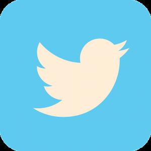 Twitter despre stirile false Nu suntem arbitrii adevarului