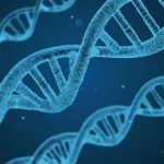 Timpul prelungit in spatiu poate modifica ADN-ul, potrivit unui studiu