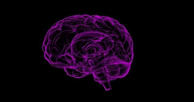 Ce metoda noua de regenerare a tesutului cerebral au cercetatorii