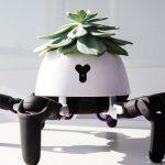 Un ghiveci robot pentru plante are picioare care ii permit sa vaneze lumina Soarelui