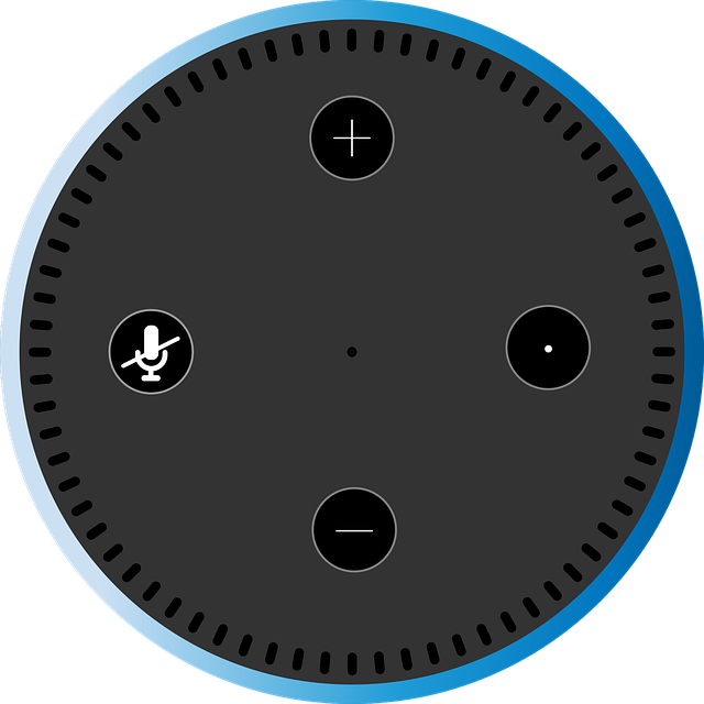 Cate boxe inteligente Echo Dot va instala o universitate pentru studentii sai
