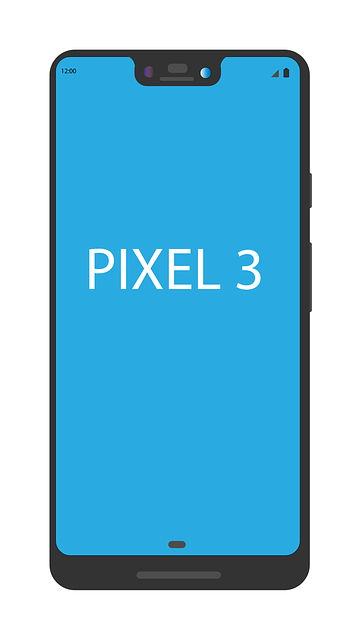 Cum ar putea captura Google Pixel 3 Super Selfie-uri
