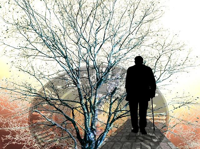 Ce pret are Walabot Home care detecteaza caderea celor in varsta in locuinte