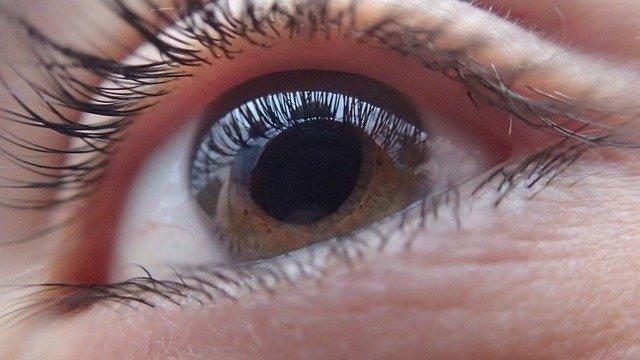 Cum iti permite o aplicatie sa-ti imprumuti ochii celor nevazatori