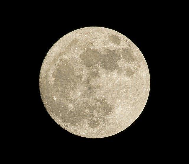 Ce plante a incercat sonda Chang'e-4 sa germineze pe Luna