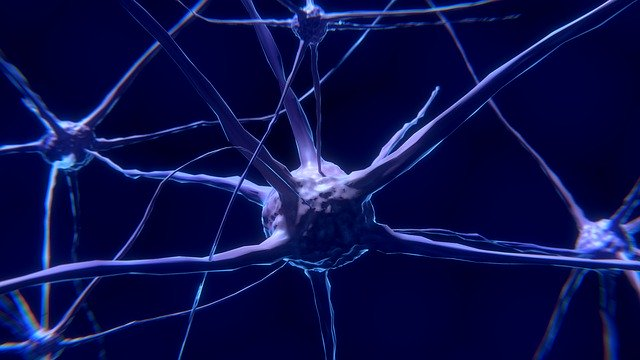 Cum functioneaza stimulatorul pentru creier care trateaza boli neurologice