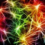 Ramona Olaru - o fufa cu cur invers proportional cu numarul de neuroni