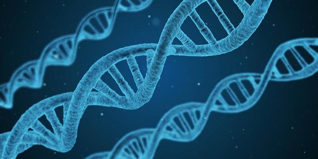 Ce procent din anumite teste ADN s-ar putea sa nu fie precise