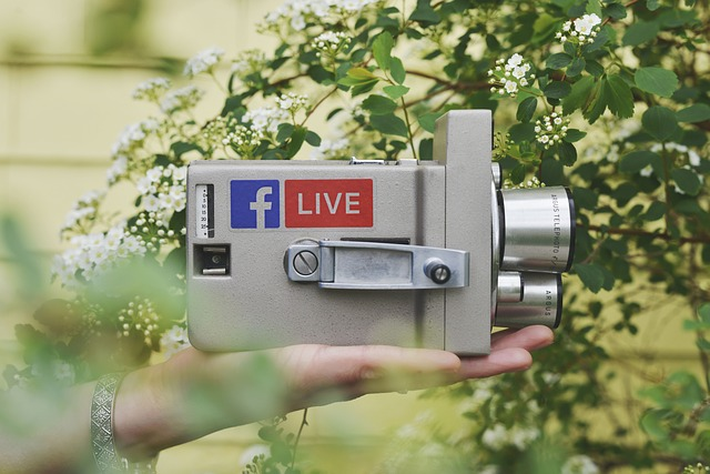 De ce premierul Australiei vrea sa suspende streaming-ul live