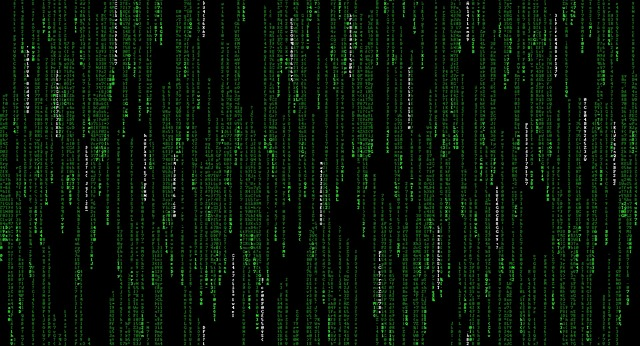 Ce nationalitate au atacatorii cibernetici care puteau schimba datele de vot in Florida