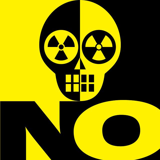 Ce s-a intamplat cu un tanar japonez care vindea uraniu online