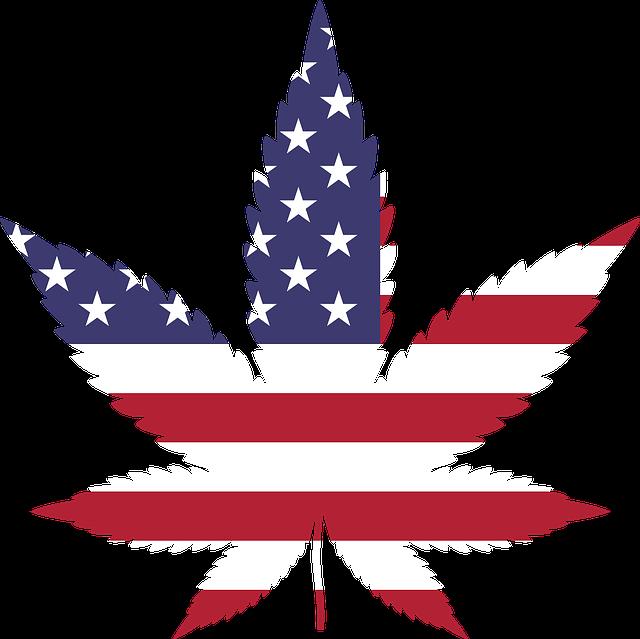Ce vor folosi procurorii din districtul Los Angeles pentru a solutiona mai usor 50.000 de cazuri legate de marijuana
