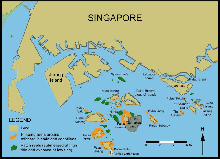 Cum e alcatuita Singapore