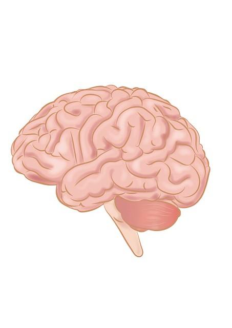 Cat de bun e sistemul care transforma semnalele creierului in text al cercetatorilor
