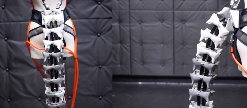 La ce e utila coada robotica pentru oameni a cercetatorilor japonezi