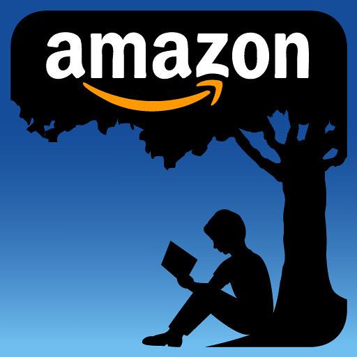 Panourile solare ale carei companii au luat foc la un depozit Amazon