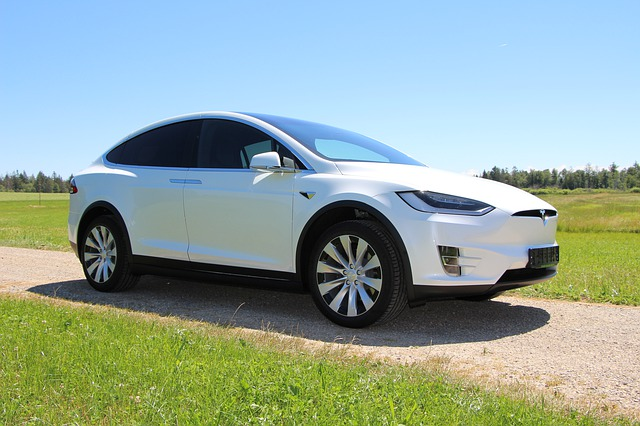 Ce companie a cumparat Tesla si de ce