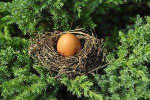 Teledonul social pentru oul Bendecel