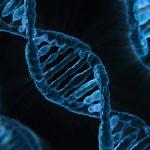 De ce companiile de testare ADN au dificultati in SUA