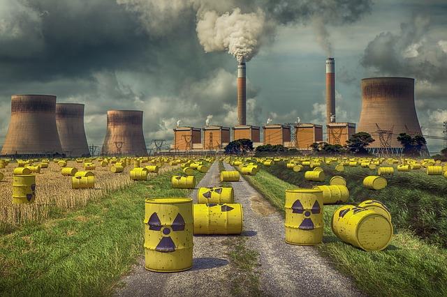 La ce pot fi folosite ciupercile care se hranesc cu radiatiile de la Cernobil