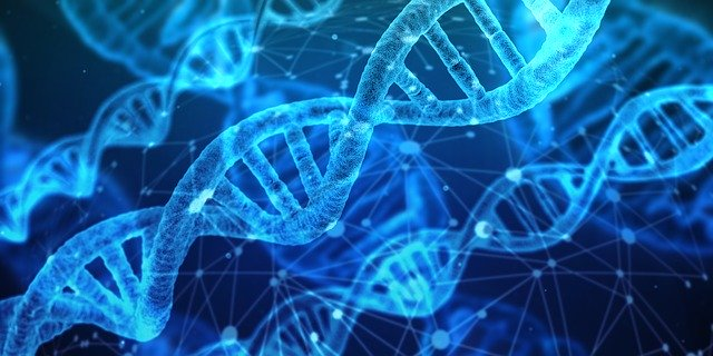 De ce se doreste editarea ADN-ului uman in Statele Unite