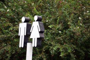 Senatorii romani despre identitatea de gen