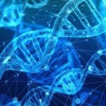 Cum s-a prezis in premiera modul de formare a proteinelor