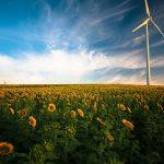 Continentul in care energia regenerabila a depasit energia poluanta anul trecut