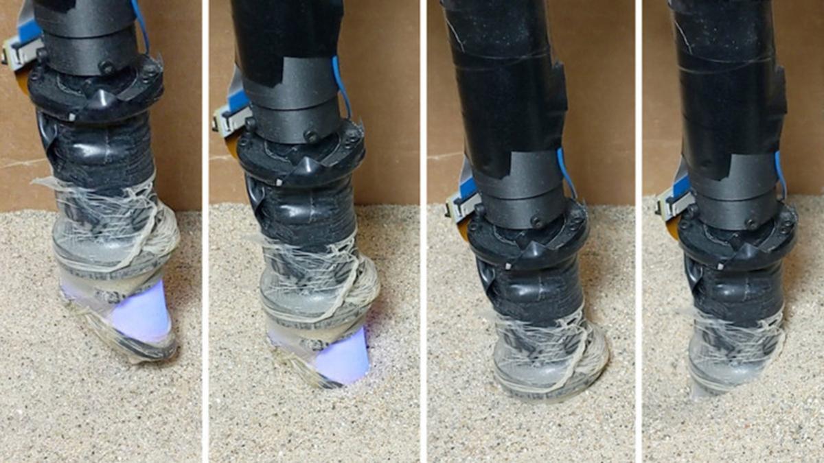 Acesta e robotul MIT pentru detectarea minelor explozive